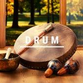 Drum by Iridis