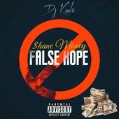 False Hope by $hane Money