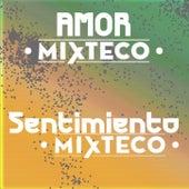 Sentimiento Mixteco by Amor Mixteco