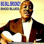 Shoo Blues by Big Bill Broonzy