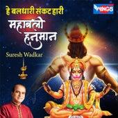 He Baldhari Sankat Hari Mahabali Hanuman by Suresh Wadkar