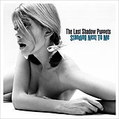 Standing Next To Me de The Last Shadow Puppets