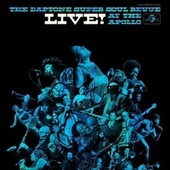 The Sticks (Live at the Apollo) by The Budos Band