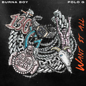 Want It All (feat. Polo G) by Burna Boy
