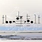 Biophilia Remix Series IV by Björk