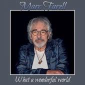 What a Wonderful World von Marc Farell