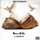 True Life by G. Gamespitta