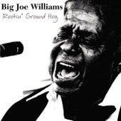 Rootin' Ground Hog de Big Joe Williams
