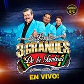 Los 3 Grandes De La Tambora En Vivo by Los 3 Grandes de la Tambora