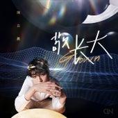 Jing Zhang Da de Chen Linong