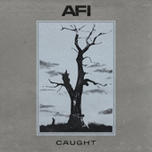 Caught by AFI