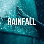 Rainfall by Rain Sounds Sleep
