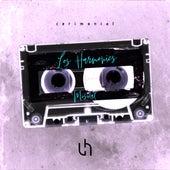 Cerimonial, Pt. 2 (Cover) di The Harmonics