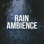 Rain Ambience by Rain Sounds Sleep
