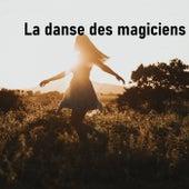 La danse des magiciens von Heaven is Shining