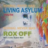 Living Asylum (Youth Remix) by Crass