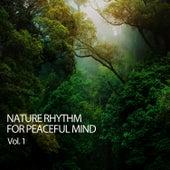 Nature Rhythm For Peaceful Mind Vol. 1 de Study Music