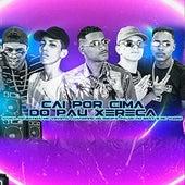 Cai por Cima do Pau Xereca (feat. Palok no Beat & Mc Vuiziki) de Luanzinho do Recife Barca Na Batida