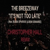 It's Not Too Late (Christopher Hall Remix) [feat. Bubba Sparxxx & Demi Demaree] by The BreezeWay