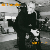 What It Is (2021 Remaster) by Mark Knopfler