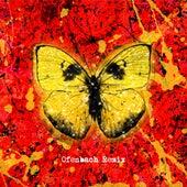 Shivers (Ofenbach Remix) by Ed Sheeran
