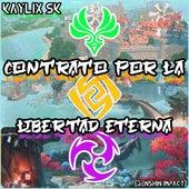 Contrato por la Libertad Eterna (Genshin Impact) de Kaylix Sk