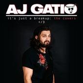 stay (feat. Rachel Horter) fra AJ Gatio