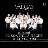 El Son De La Negra / Guadalajara by Mariachi Vargas de Tecalitlan