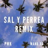 Sal Y Perrea (Remix) de Manu RG