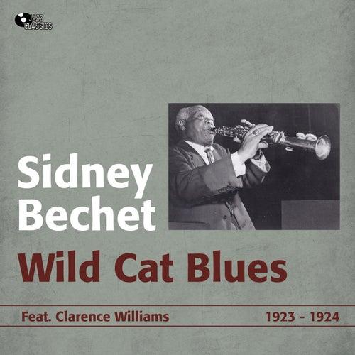 Wild Cat Blues (1923 - 1924) by Sidney Bechet
