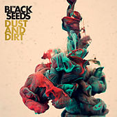 Dust And Dirt by The Black Seeds