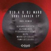 Soul Shaker de Blu.a