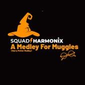 A Medley for Muggles: Harry's Wondrous World / Christmas at Hogwarts / Professor Umbridge / Hedwig's Theme von Squad Harmonix