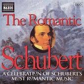 Schubert: The Romantic Schubert by Various Artists
