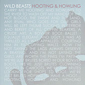 Hooting & Howling by Wild Beasts