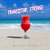 Transistor Strings by Gabriele Saro