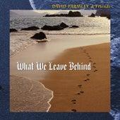 What We Leave Behind by David Parmley