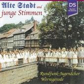 Alte Stadt und junge Stimmen - Der Rundfunk-Jugendchor Wernigerode 1960-2000 by Rundfunk-Jugendchor Wernigerode