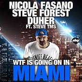 Wtf Is Going On In Miami by Nicola Fasano
