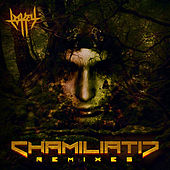 Chamiliatic Remixes by Lo-Key