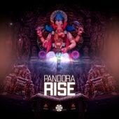Rise by Pandora
