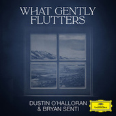 What Gently Flutters by Dustin O'Halloran