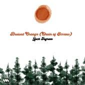 Bruised Orange (Chain of Sorrow) by Jack Ingram