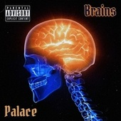Brains by Palace