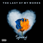 The Last Of My Words de Spiiccy