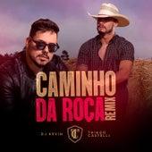 Caminho da Roça (Remix) de Thiago Castelli