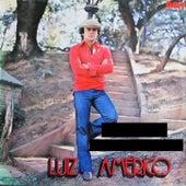 1979 von Luiz Américo