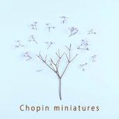 Chopin miniatures von Various Artists