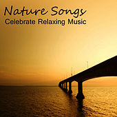 Nature Songs: Celebrate Relaxing Music by Piano Brothers