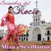 Sonidos del Rocío. Misa y Sevillanas by Various Artists